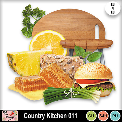 Country_kitchen_011_preview