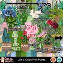 Plants0_small
