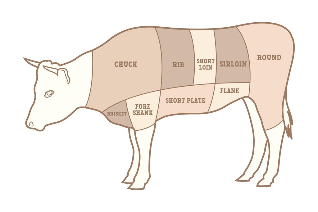 Cuts of Beef Butcher Shop Diagram Mural Poster 36x54 inch