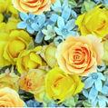 flower3☆