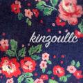kinzoullc