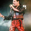 Freddie Mercury Red and Black Jacket.