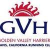 Gvh_logo