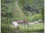 Finca en Venta - Otros Municipios Norte Trujillo