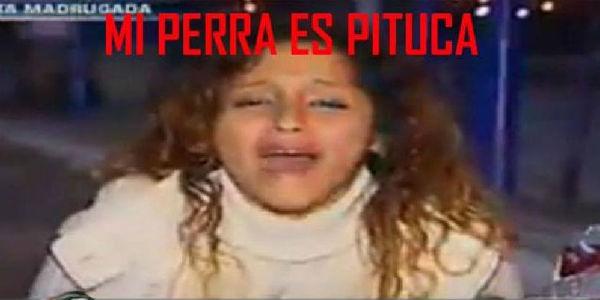Virales de infarto: recuento de los mejores videos peruanos en YouTube
