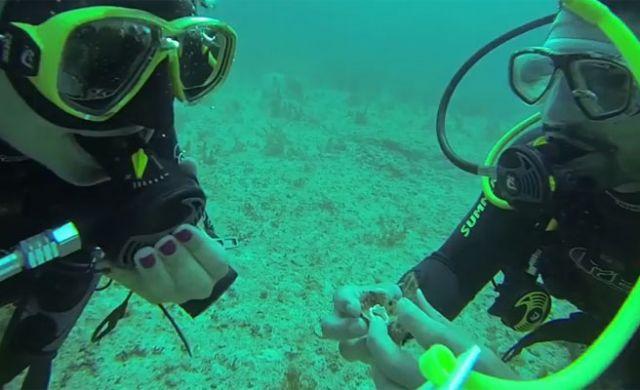 Buzo que propuso matrimonio a su novia debajo del mar se vuelve viral