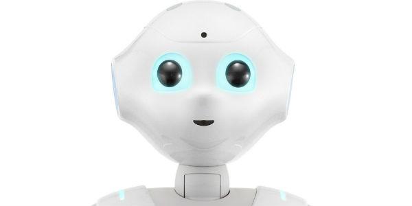 Esta compañía en Japón prohíbe a clientes tener sexo con su robot