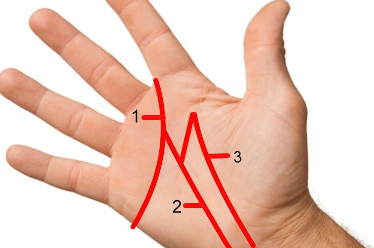 Quiromancia: descubre el significado de las líneas de la mano