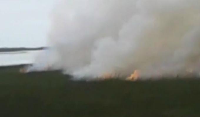 Huaura: zona ecológica quedó destruida por incendio forestal