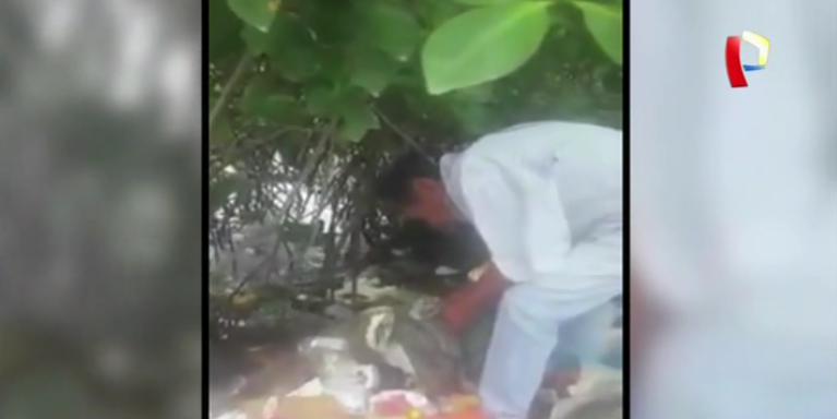 Tumbes: hombre lanza gatos recién nacidos a manglar