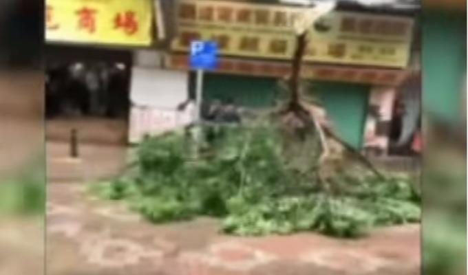 China: siete personas murieron tras el arrasador Tifón 'Hato'