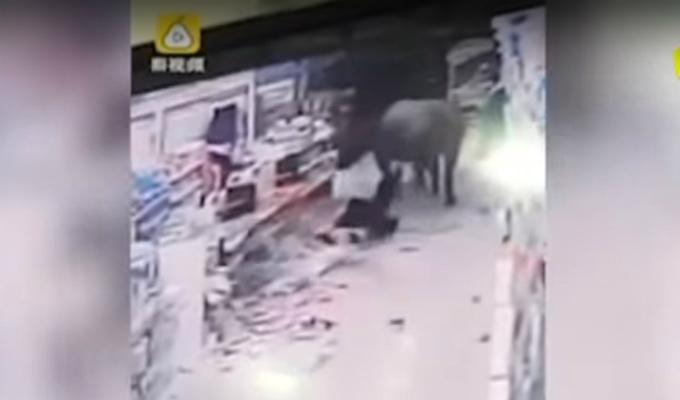 China: Búfalo embravecido atacó a embarazada quién resultó ilesa