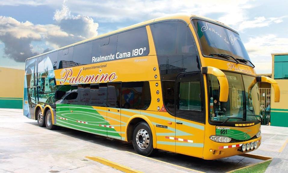 Empresa de transporte Palomino se pronuncia sobre violación a terramoza en bus