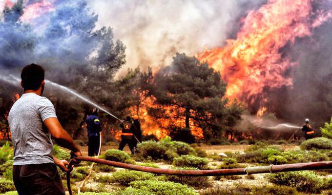 Grecia: cifra de muertos por incendio forestal asciende a 91 personas