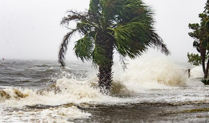 EEUU: huracán Michael llega a Florida y aumenta a categoría 4