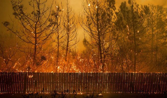 Incendios forestales vienen afectado a California