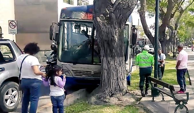 Bus del Corredor Azul se estrelló contra un árbol en Miraflores