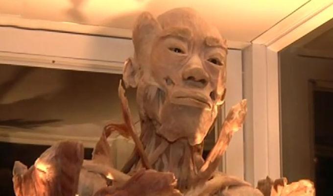 Cuerpos Humanos Reales: Exposición estará hasta el 9 de diciembre en el Jockey Plaza