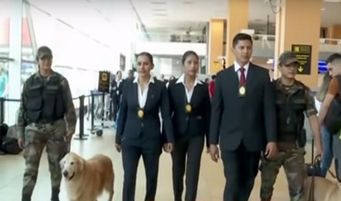 """Aeropuerto Jorge Chávez: así operan los agentes de la Dirandro para capturar a los """"burriers"""""""