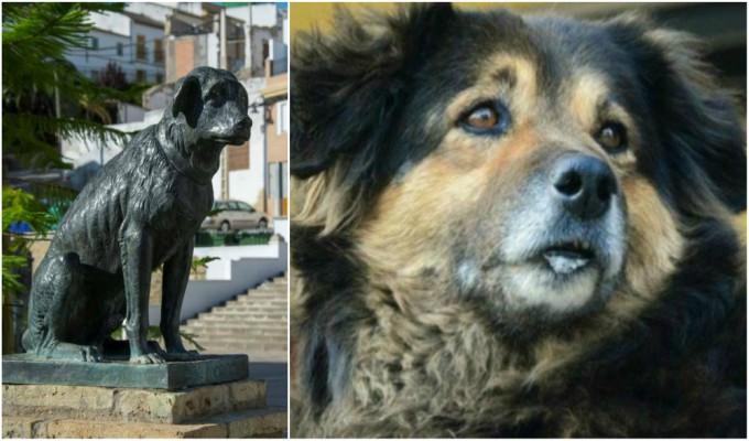 UNMSM: 'Perrovaca' tendrá estatua en su honor