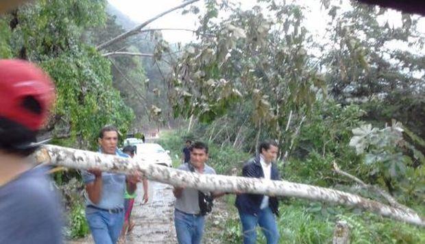 San Martín: lluvias provocan derrumbe en carretera Tarapoto-Cuñumbuqui