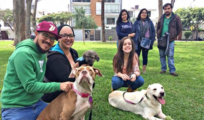 Lanzan campaña para que perros de emigrantes venezolanos se reúnan con sus dueños