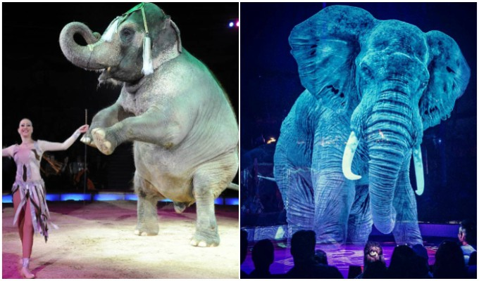 Circo sustituye animales por hologramas para combatir el maltrato
