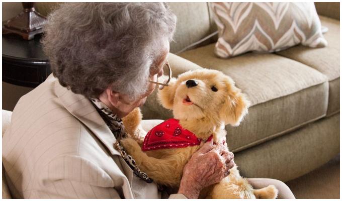 """EEUU: """"Tombot"""" es creado para ayudar a personas de la tercera edad"""