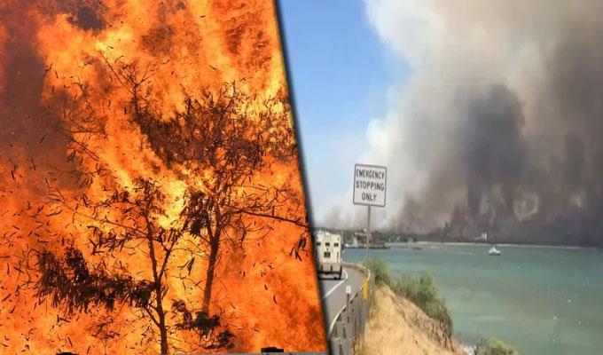 Hawaii: incendios forestales obligan a evacuar a miles de personas en Maui