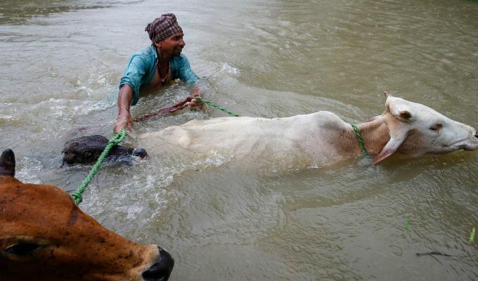 Asia: suben a 200 fallecidos por inundaciones provocadas por lluvias monzónicas