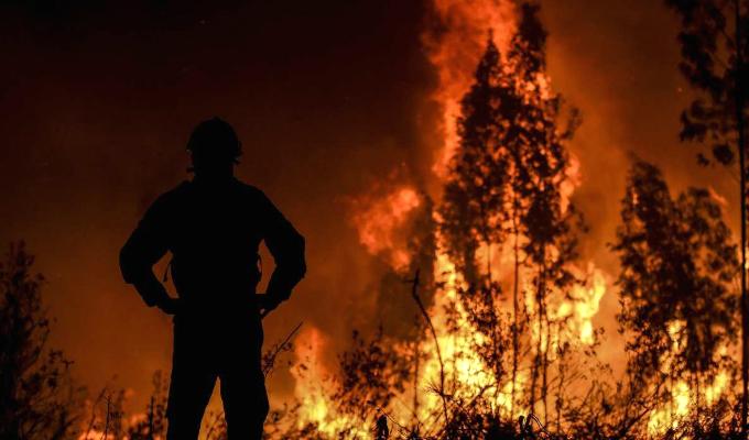 Portugal: más de mil bomberos luchan contra gran incendio forestal