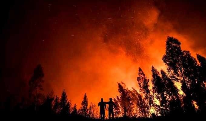 Incendio en Portugal: más de 8 500 hectáreas se perdieron y 32 personas quedaron heridas