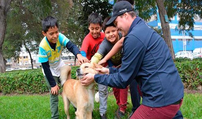 La Victoria: ordenanza sancionará maltrato contra animales domésticos