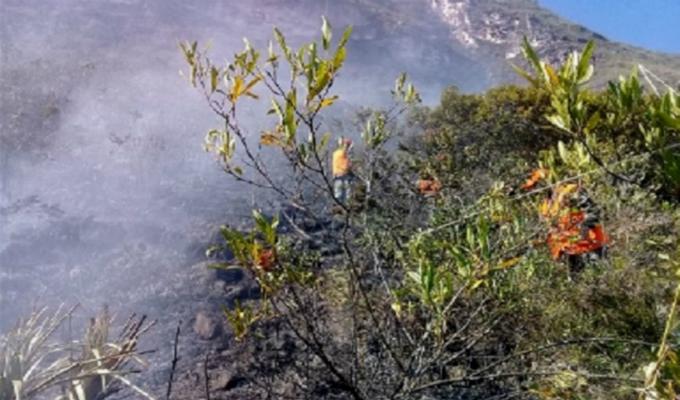 Kuélap: incendió consumió más de 200 hectáreas de pastizales