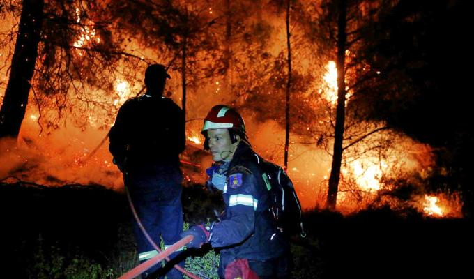 Grecia: incendio forestal provocó una catástrofe ecológica