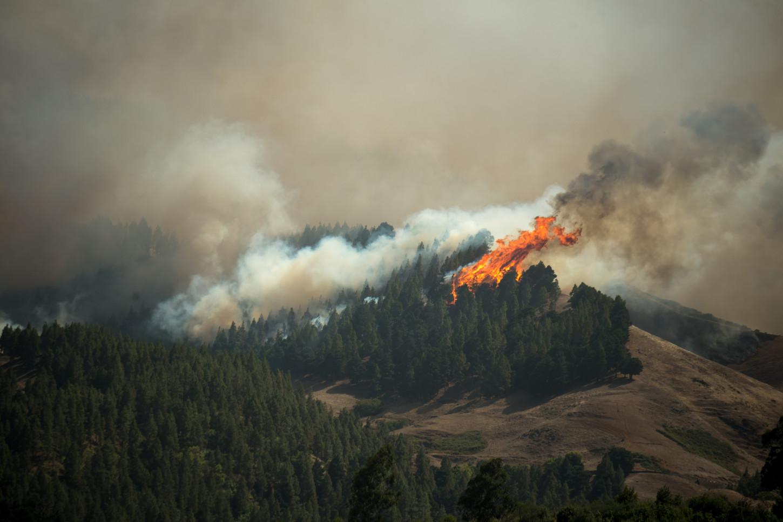 España: Incendio forestal consume zonas naturales protegidas en Gran Canaria [FOTOS]