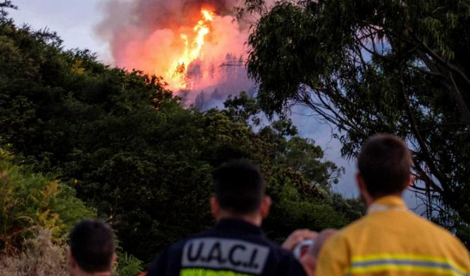 España: más de 6 mil hectáreas quemadas por incendio en Gran Canaria