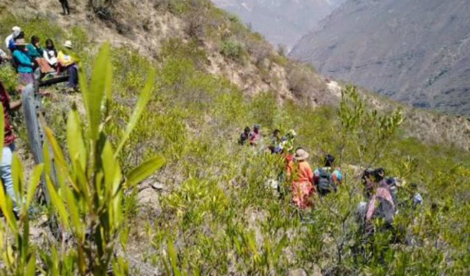 Áncash: al menos dos muertos y 12 heridos tras caída de combi a abismo