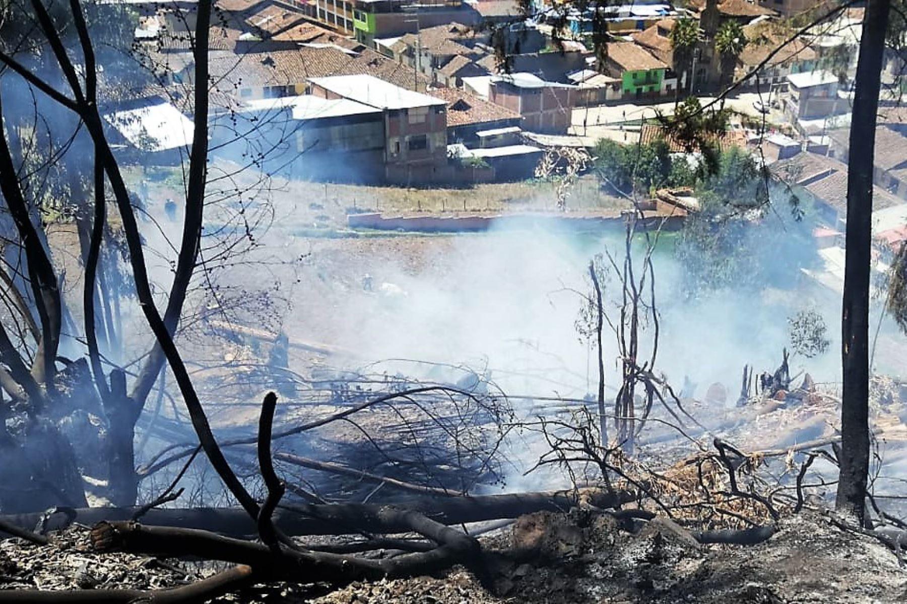 Áncash: 17 animales fallecieron en incendio forestal