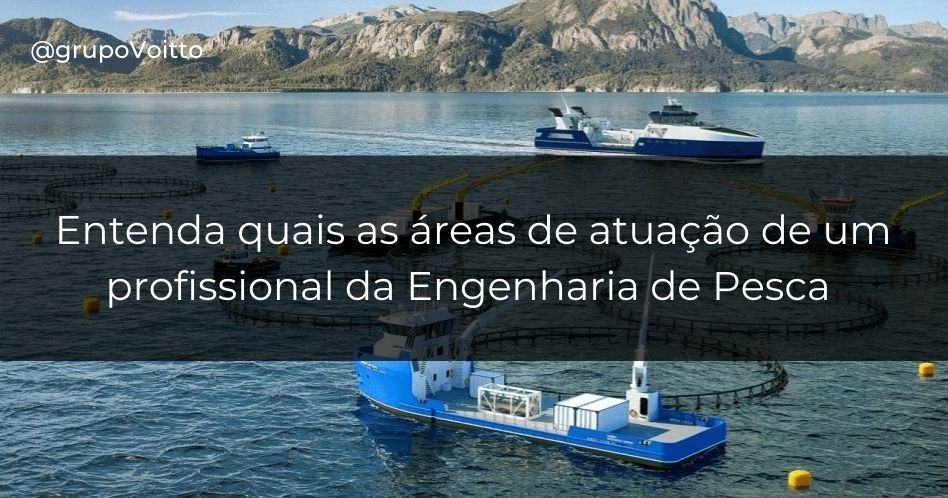 Engenharia de Pesca: o que é, o que faz e quanto ganha?