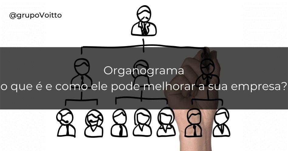 Organograma: o que é e como ele pode melhorar a sua empresa?