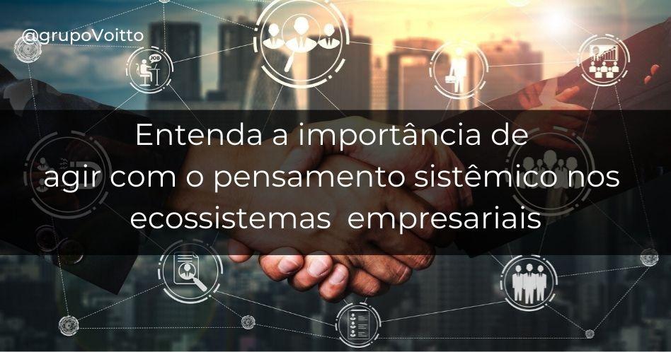 A importância de agir com o pensamento sistêmico nos ecossistemas empresariais