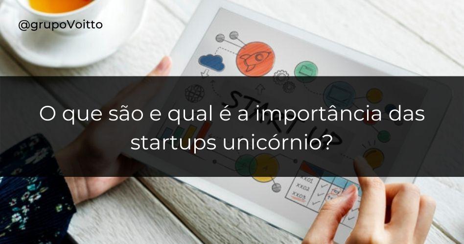 O que são e qual é a importância das startups unicórnio?
