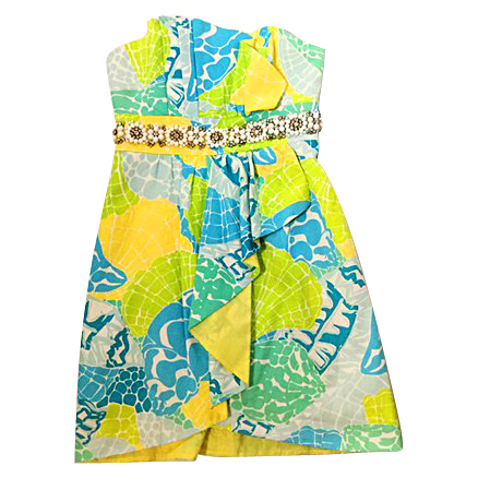 Lilly Pulitzer Size 2 Dress