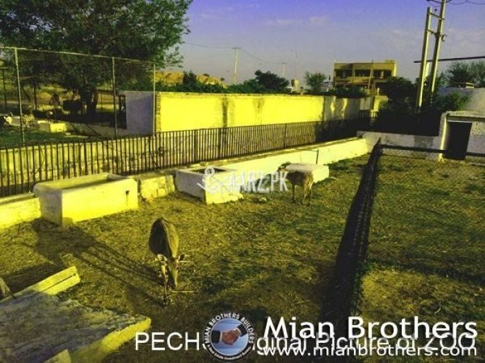 1200 Square Yard Plot For Sale
