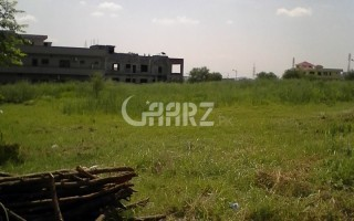 1000 Square Feet Plot for Sale.