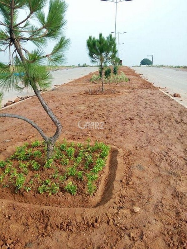 5 Marla Plot Available- For Sale