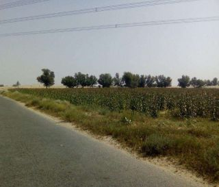 125 Square Yard Commercial Land for Sale in Karachi Bahria Midway