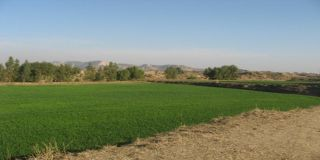 10 Marla Residential Land for Sale in Lahore Bahria Town Tulip Block