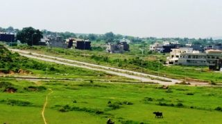1000 Square Feet Residential Land for Sale in Islamabad D-12/3